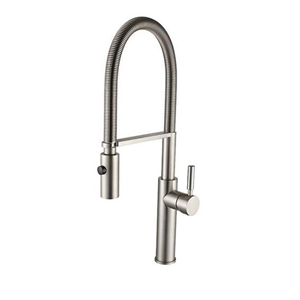 Spring Kitchen Faucet with Dual Function Spray Brass Sink Tap Brushed Nickel/Chrome