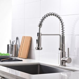 Special Spring Kitchen Faucet Pull-Out Dual Function Sprayer Kitchen Tap in Brushed Nickel