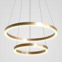 LED Pendant Light Drawing Craft 2 Rings Lamp 60+40cm