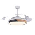 Invisible Retractable Ceiling Fan with Light Remote Control QM6033