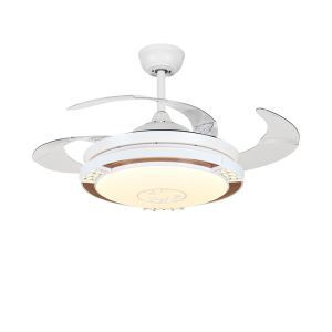 Modern LED Ceiling Fan Light Invisible Retractable Chandelier Fan Light With Remote Control Living Room Lamp QM8173