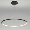 Modern LED Pendant Light Black Circle Lamp 80cm