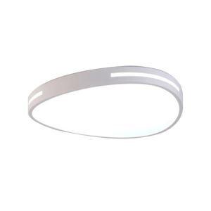 Modern LED Flush Mount Oval Ceiling Light Living Room Bedroom Study Room Lamp CL8088