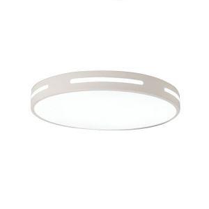 Modern LED Flush Mount Simple Circular Ceiling Light Living Room Dining Room Bedroom Lamp 8063