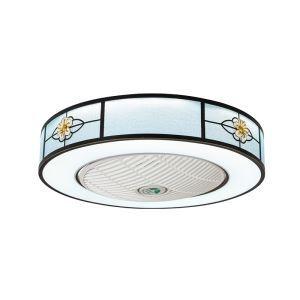 Modern LED Ceiling Fan Light Energy Saving Flush Mount Living Room Bedroom Office Study Room Lamp 23 Inch QM8034