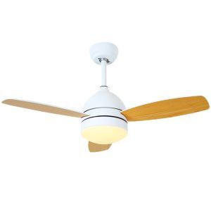 Modern LED Ceiling Fan Light Chandelier Fan Light With Remote Control Living Room Bedroom Lamp QM1105