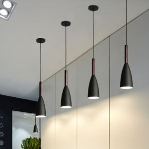 Modern Simple Pendant Light Cord Adjustable Lamp Special Design Light Bedroom Hallway Light QM3054