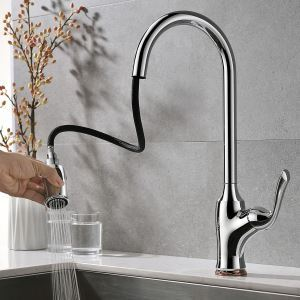 Chrome Pull Out Kitchen Faucet Elegant Double Functions Spray Head Swivel Tap
