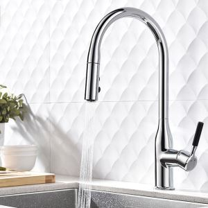 Chrome Pull Out Kitchen Faucet Modern Simple Double Functions Spray Head Swivel Tap