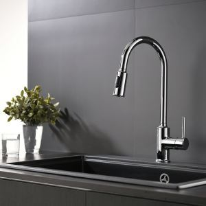 Pull-Out Kitchen Faucet Chrome Rotatable Double Functions Spray Head Tap