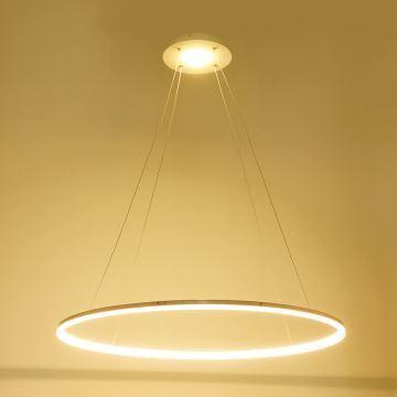 In Stock Ceiling Lights Modern Led Acrylic Pendant Light Living Led Ring Lights 60cm